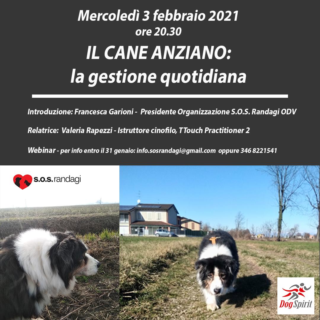 locandina-instagram-3-febbraio-2021